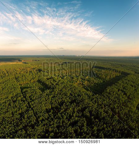 Beautiful panoramic photo over the tops of pine forest. Aerial view. From above. Picture taken using the copter.