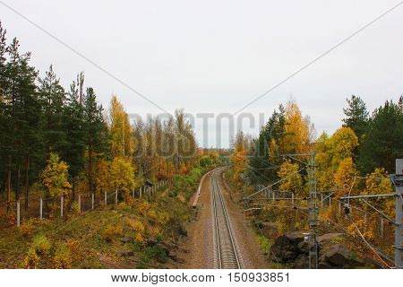 Rail road train track path way pattern autumn fall landscape with trees and forest. Transit transportation industrial background. Travel, trip, journey , tourism, vacation concept with empty copyspace for text