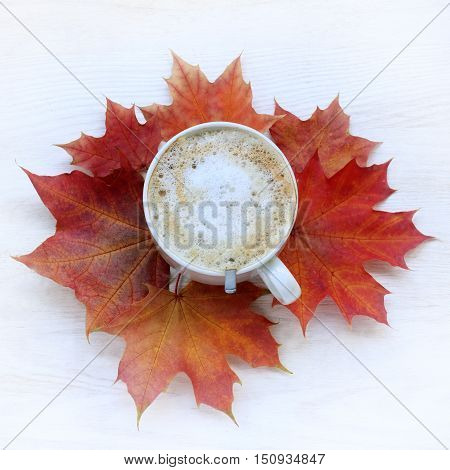 flat lay with a cup of frothy cappuccino and maple leaves top view / coffee with autumn mood
