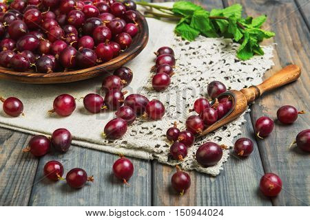 Ripe red purple berry gooseberries in wooden plate on gray wooden table. Gooseberry berries on the table cloth. Gooseberries in wood spoon mint.