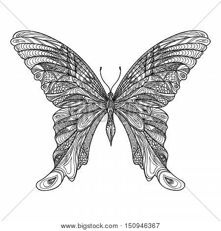 Butterfly isolated with beautiful patterned wings. butterfly hand drawn sketch illustration. Decorative abstract doodle design element with ornament suitable for a tattoo.