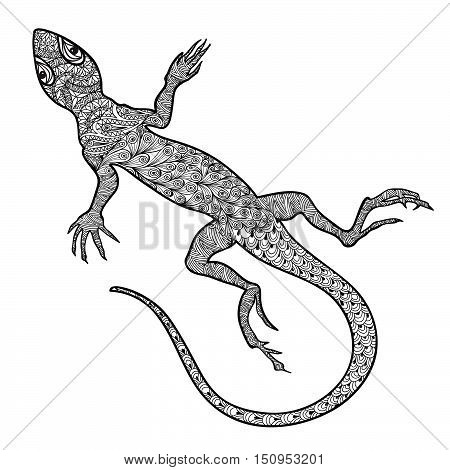 Lizard animal isolated. Hand drawn salamander with ethnic tribal ornamental pattern. Sketch of lizards reptiles with long scrolled tails