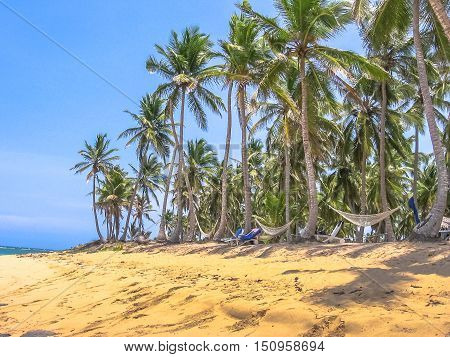 Playa Rincon is located about 25 kilometers from the Port of the Town of Samana. The spectacular, wild and remote Caribbean beach of Playa Rincon is one of the most beautiful in Dominican Republic.