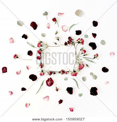 wreath frame with roses eucalyptus branches leaves and petals isolated on white background. flat lay overhead view