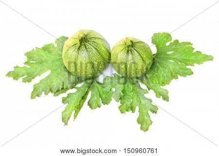 Eight ball Squash or Zucchini or Round Courgette (Cucurbita pepo) on white background.
