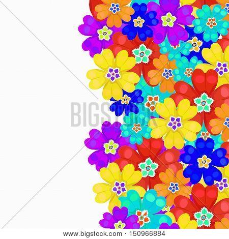 Card Spring Primroses Primula Flowers. Vector Illustration