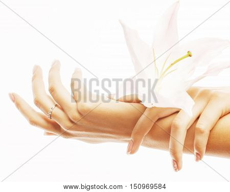 beauty delicate hands with manicure holding flower lily close up isolated on white perfect shape, beautiful fingers