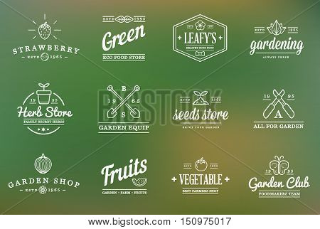 Set Of Vector Garden And Farm Elements And Fruits Or Vegetables Icons Illustration Can Be Used As Lo