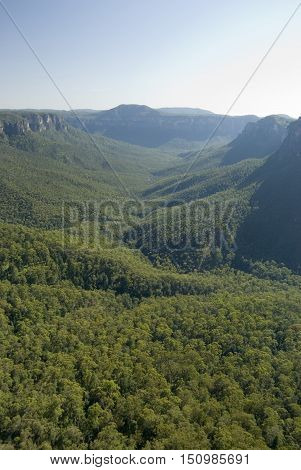 Tree lined Grose Valley in the Blue Mountains located in New South Wales Australia