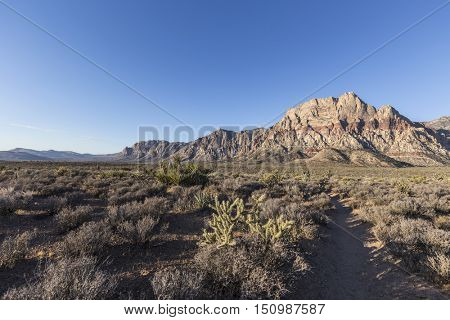 Early morning in Red Rock Canyon National Conservation Area.  A popular natural destination 20 miles from the Las Vegas strip.