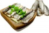 sandwich with fish sprat and spring onions poster