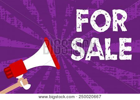 Text Sign Showing For Sale. Conceptual Photo Putting Property House Vehicle Available To Be Bought B