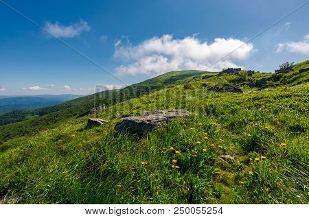 Rocks On Grassy Hillside Of The Mountain. Yellow Dandelions Along The Path Uphill In To The Sky With