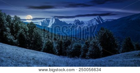 Composite Summer Landscape In Mountains At Night In Full Moon Light. Perfect Countryside Scenery Wit