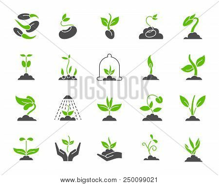 Green Sprout Silhouette Icons Set. Isolated On White Web Sign Kit Of Seeds. Organic Plant Pictogram
