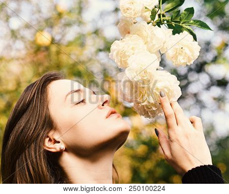 Nature and blossom concept. Woman with romantic face sniffs white or ivory roses. Girl looks at flowers on nature background, defocused. Tender scent and natural beauty. poster