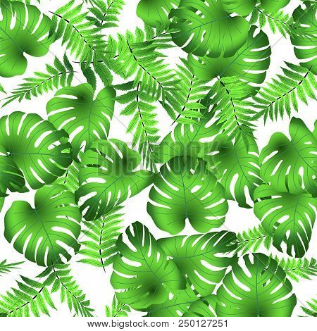 Vector Seamless Tropical Pattern, Bright Tropical Foliage, Monstera Leaves. Modern Bright Summer Pri