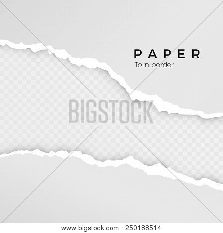 Torn Paper Sheet. Torn Paper Edge. Paper Texture. Rough Broken Border Of Paper Stripe. Vector Illust