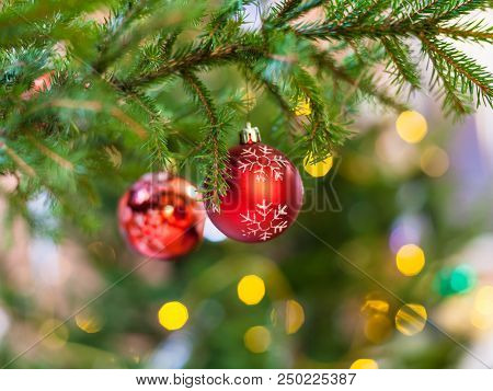 Xmas Background - Two Red Balls With Snowflake On Natural Christmas Tree Branch Indoor