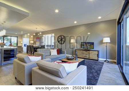 White And Gray Living Room Interior With Exit To A Deck.