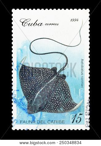 Cuba - Circa 1994 : Cancelled Postage Stamp Printed By Cuba, That Shows Spotted Eagle Ray.