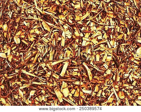 Pile of wood chips and sawdust can be used for biofuel manufacturing. Wood chips in pile poster