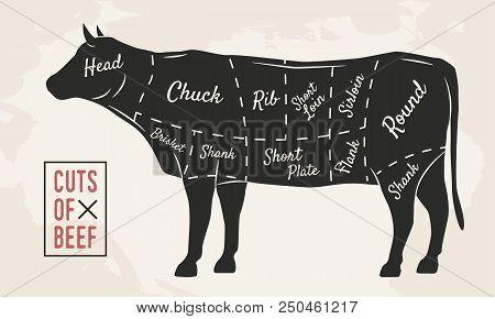 Meat Cuts. Beef Cuts. Vintage Poster For Restaurant Or Butcher Shop. Retro Diagram. Vector Illustrat