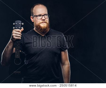 Redhead Bearded Male Musician Wearing Glasses Dressed In A Gray T-shirt Holds Ukulele. Isolated On D