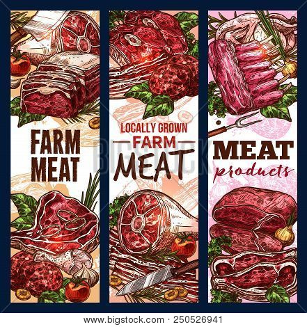 Meat House Sketch Banners For Butchery Farm Shop. Vector Design Of Meat And Sausages Cervelat, Peppe