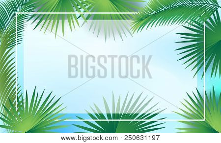 Tropical Palm Tree Leaves Frame For Jewish Holiday Sulkkot And Rosh Hashanah, Sukkah Decoration, Vec