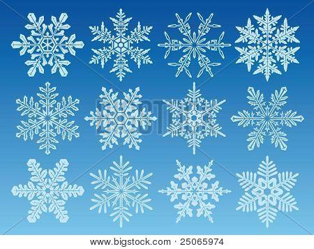 icon set of 12 different snowflakes