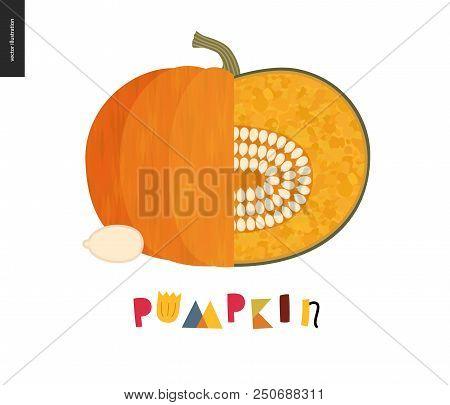 Food Patterns, Summer - Vegetable, Flat Vector Illustration - Orange Ripe Pumpkin, Uneven Fresh Pulp