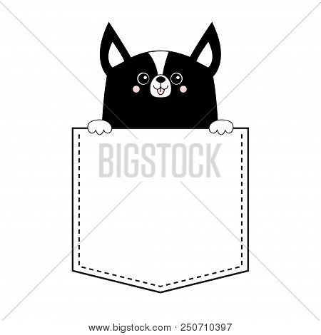 poster of Corgi dog happy face head icon in the pocket. Holding hands paw. Cute cartoon pooch character. Contour black silhouette. Kawaii animal Funny baby puppy. Love card. Flat design. White background Vector