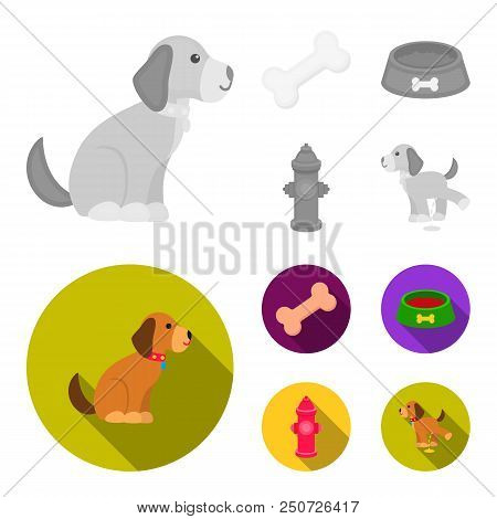 A Bone, A Fire Hydrant, A Bowl Of Food, A Pissing Dog.dog Set Collection Icons In Monochrome, Flat S