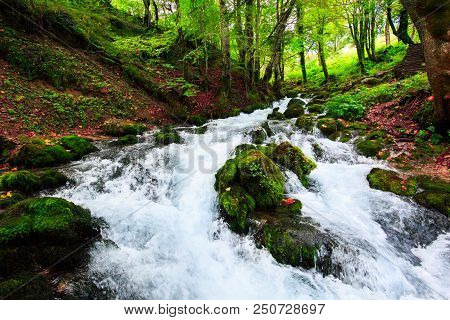 Autumn Landscape With Mountain River Flowing Among Mossy Stones Through The Colorful Forest. Silky S