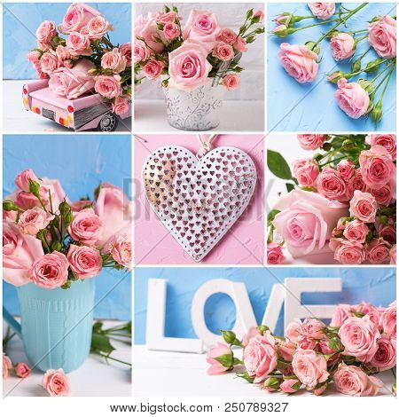Collage From  Romantic Photos With Pink Roses Flowers  On Textured Background. Floral Still Life.  S