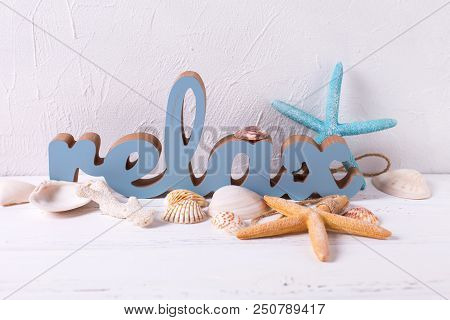 Marine  Decorations And Word Relax On White Textured  Background. Shells, Coral, Succulent Echeveria