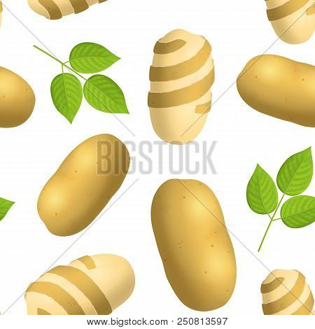 Realistic Detailed 3d Whole Potatoes Twisted Peel Seamless Pattern Background On A White Ripe Raw Un