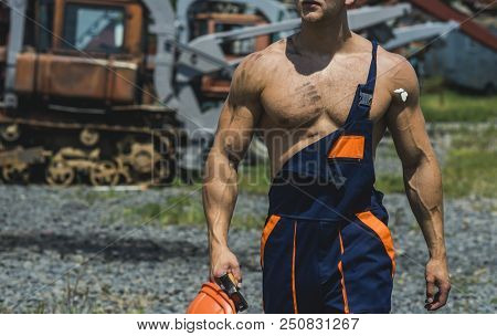 Muscle Strength Concept. Fit Torso With Muscular Chest And Arms In Detail, Muscle Strength. Muscle S