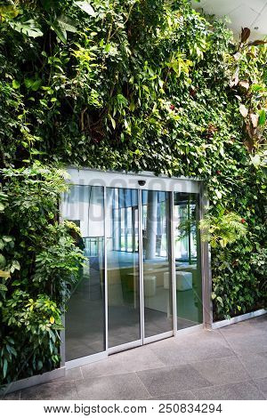 Glass Door In The Middle Of Vertical Garden, Living Green Wall With Flowers And Plants Under Artific