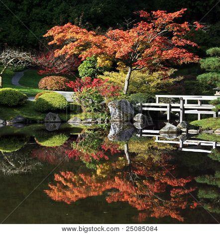 Arboretum, Seattle Japanese Garden