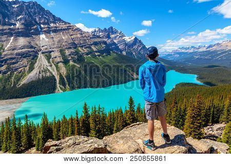 A Teen Hiker Looks At Peyto Lake From Bow Summit In Banff National Park On The Icefields Parkway. Th