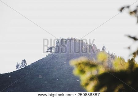 Puffy Balls Of Cotton Seeds Float Against A Steep Mountain Backdrop. Featherville, Idaho In The Sawt