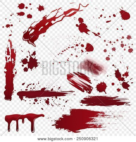 Set Of Vector Various Realistic Detailed Bloodstain, Blood Or Paint Splatters Isolated On The Alpha