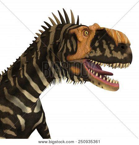 Rajasaurus Dinosaur Head 3d Illustration - Rajasaurus Was A Carnivorous Theropod Dinosaur That Lived