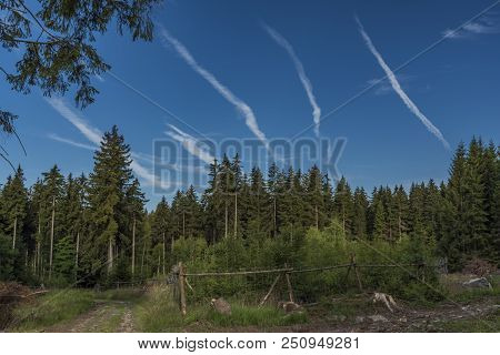 Heaven In Slavkovsky Les National Park With Blue Heaven
