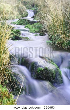 Green Fresh Mountain Stream
