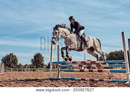Young female jockey on dapple gray horse jumping over hurdle in the open arena. poster
