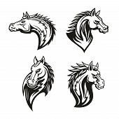 Horse head heraldic icons for royal coat of arms and heraldry signs. Vector line set of equine head with mane for tattoo design, heraldic shield, chess team badge or equestrian sport club poster