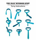 The half windsor tie knot instructions isolated on white background. Guide how to tie a necktie. Flat illustration in vector. poster